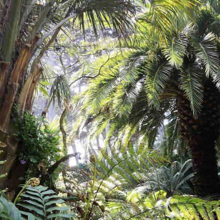 Pause détente au jardin Georges Delasselle
